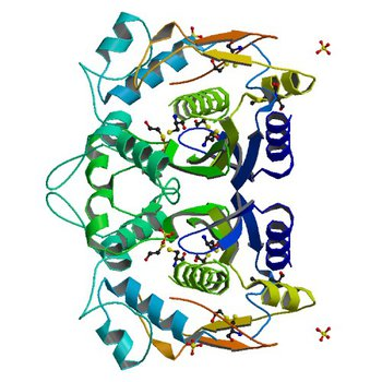 CRYSTAL STRUCTURE ANALYSIS OF ALA167 MUTANT OF ESCHERICHIA COLI (1EV5)