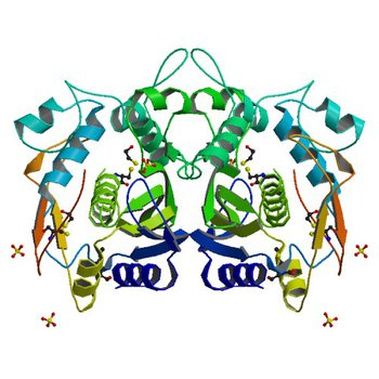 CRYSTAL STRUCTURE ANALYSIS OF CYS167 MUTANT OF ESCHERICHIA COLI WITH UNMODIFIED CATALYTIC CYSTEINE (1EVG)
