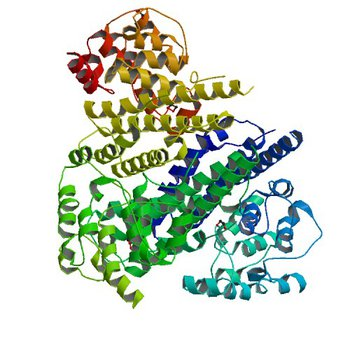 The Crystal Structure of Protein PA2201 from Pseudomonas aeruginosa (2FEF)