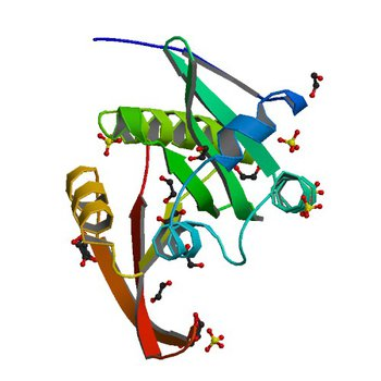 Crystal structure of a GNAT superfamily acetyltransferase PA4794 (4KUA)