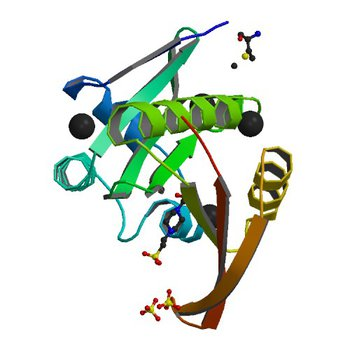 Crystal structure of a GNAT superfamily acetyltransferase PA4794 in complex with HEPES (4M3S)